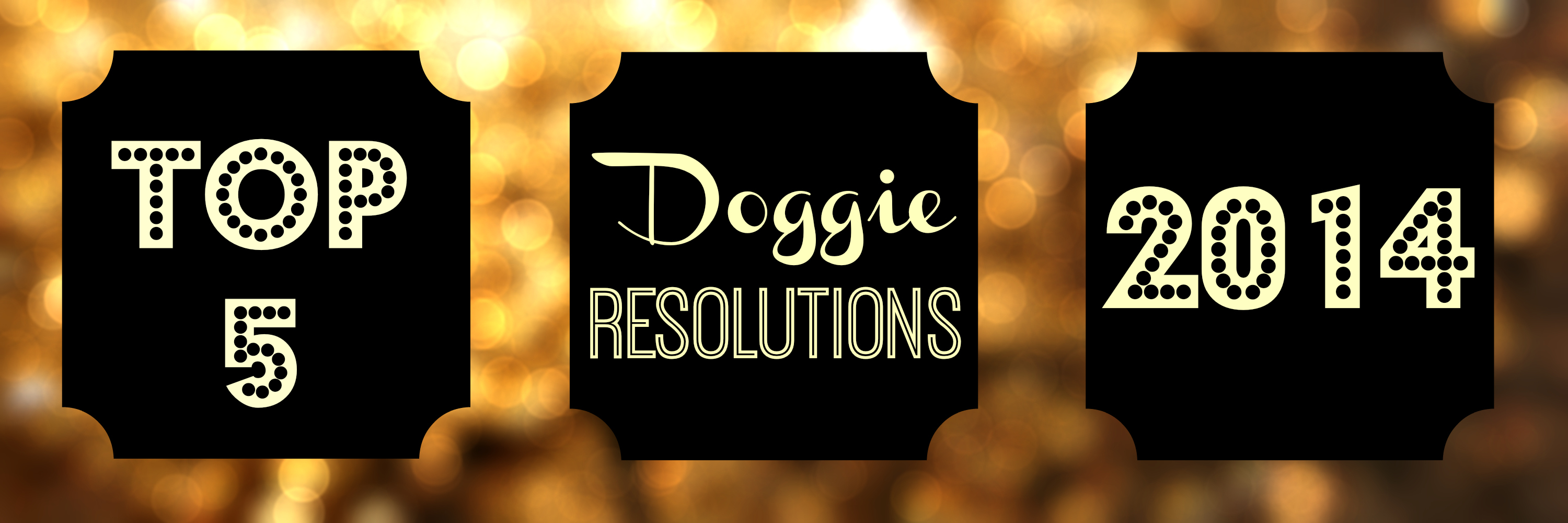 Top 5 New Years Resolutions For Your Dog (And You!)