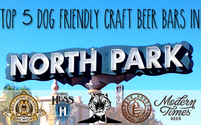 Top 5 Dog Friendly Craft Beer Bars in North Park, San Diego